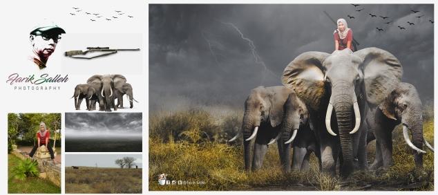 gajah1b